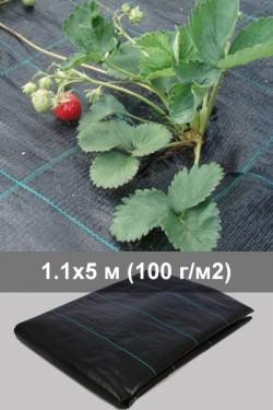Агроткань для клубники 1.1 м  - 5 м