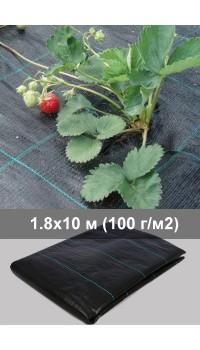 Агроткань для клубники 1.8 м  - 10 м