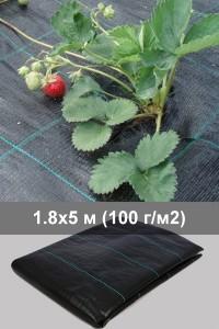 Агроткань для клубники 1.8 м - 5 м