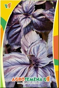 Базилик Русский гигант фиолетовый