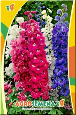 Дельфиниум Цветочный фонтан