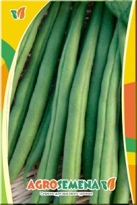 Фасоль спаржевая Зеленый карандаш