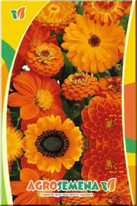 Смесь однолетних цветов Жаркий полдень