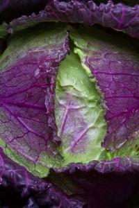 Капуста савойская Фиолетовое кружево