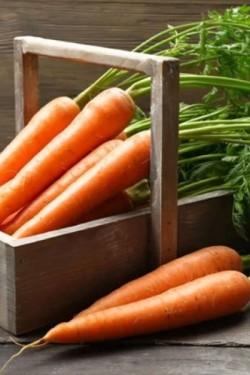 Морковь Крестьянка
