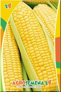 Кукуруза Сахарный початок