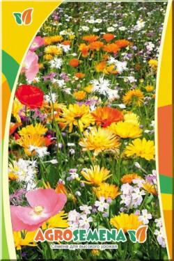Смесь луговых цветов
