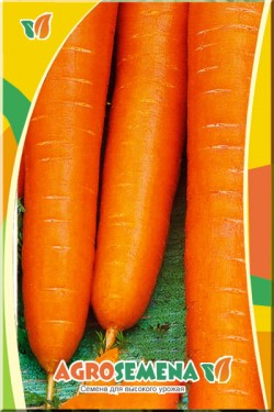 Морковь Барыня 2 гр