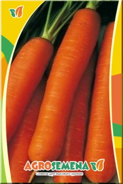 Морковь Чаровница