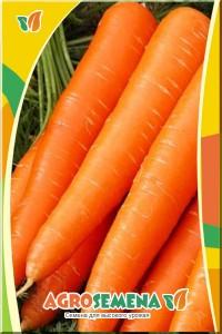 Морковь Дуняша