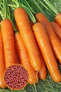 Морковь Нантская 4 300 шт гелевое драже