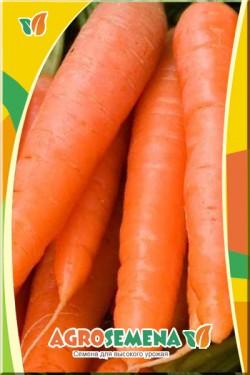 Морковь Каротан
