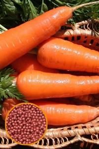Морковь Лакомка драже