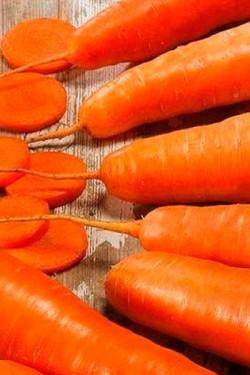 Морковь Лявониха
