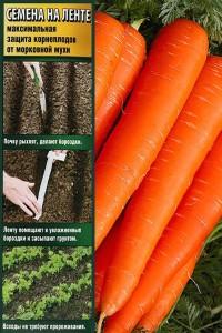 Морковь на ленте Лонге Роте (Бессердцевинная) 8 м