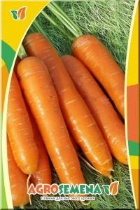 Морковь Нантская - 5 грамм