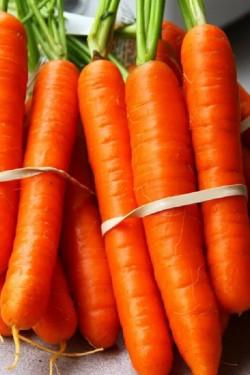 Морковь Тушон