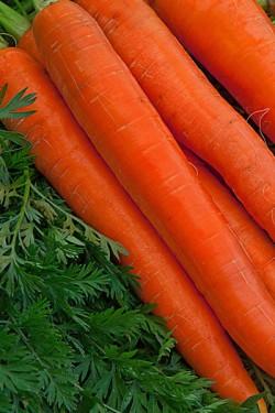 Морковь Витаминная 20 грамм