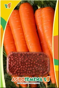 Морковь Витаминная 6 в гранулах 300 шт