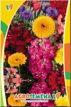 Смесь цветов Память сердца