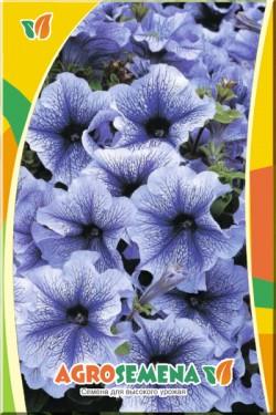 Петуния крупноцветковая Голубая