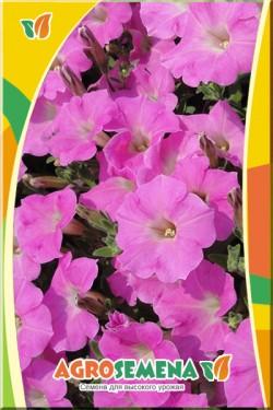 Петуния Дита F1 многоцветковая