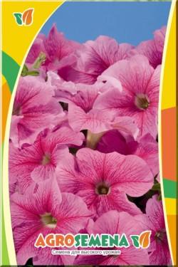 Петуния Дэдди розовая F1 крупноцвет