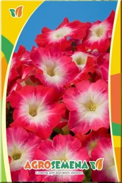 Петуния Карпет Пинк Морн F1 многоцветковая