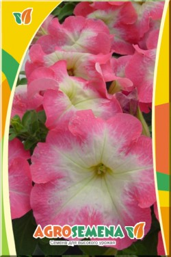 Петуния Мираж Салмон морн F1 многоцветковая