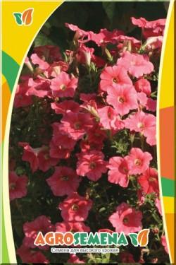 Петуния Карпет Лососевый F1 многоцветковая