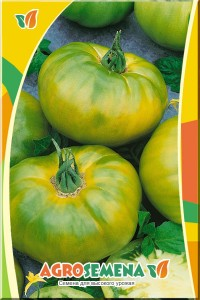 Томат Сахар зеленый