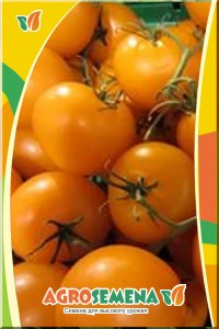 Томаты Оранж